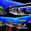 aula virtual interactiva